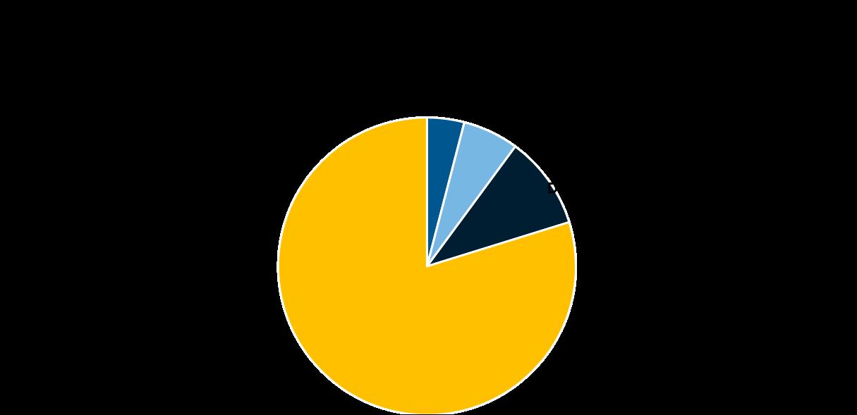 Kreisdiagramm: für 79 Prozent der Befragten ist die Familie das wichtigste im Leben